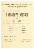 1921 MORTARA (PV) Adequato bozzoli in LOMELLINA