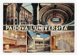 1974 PADOVA Università Vedutine e Teatro anatomico *Cartolina postale FG VG
