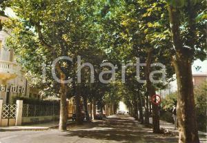 1971 LIDO DI CAMAIORE (LU) Viale del Secco *Cartolina FG VG