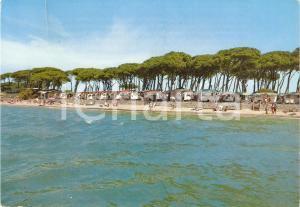 1970 ca PIOMBINO (LI) Camping TORRE MOZZA Animata *Cartolina VINTAGE FG VG
