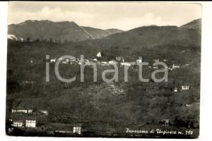 1953 UNGIASCA (VB) Veduta panoramica del paese *Cartolina postale FG VG