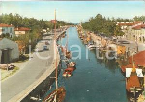 1963 CERVIA (RA) Vendita legnami sulle rive del Porto Canale *Cartolina FG VG