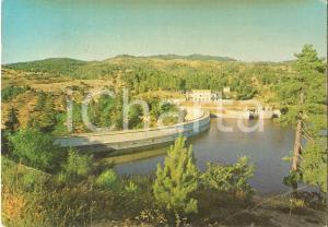 1967 SPEZZANO DELLA SILA (CS) La diga del Lago Cecita *Cartolina FG VG