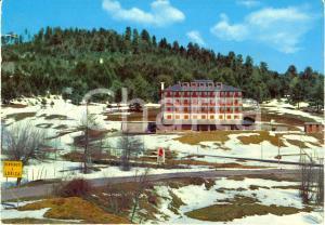 1981 LORICA (CS) Casa di riposo ENAM sull'Altopiano della SILA *Cartolina FG VG