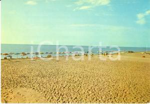 1960 ca POLICORO (MT) Veduta della spiaggia *Cartolina FG NV VINTAGE