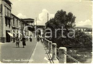 1955 VENAFRO (IS) Veduta di corso LUCENTEFORTE *Cartolina ANIMATA FG VG
