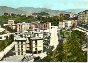 1965 CATANZARO Viale SAN PIO X nel rione PONTEPICCOLO * Cartolina ANIMATA FG VG
