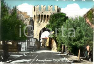 1955 ca CAMPOFILONE (FM) Borgo San PATRIZIO da porta MARINA * Cartolina FG VG