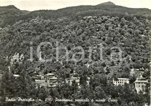 1956 BADIA PRATAGLIA (AR) Panorama e monte CUCCO *Cartolina postale FG VG