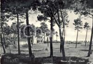 1950 ca MASSA Panorama della frazione RONCHI *Cartolina postale FG NV