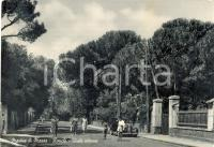 1950 ca MASSA Viale con passanti a RONCHI *Cartolina postale ANIMATA FG NV