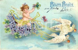 1900 ca Auguri PASQUA Amorino su carrozza con colombe *Augurale DANNEGGIATA VG