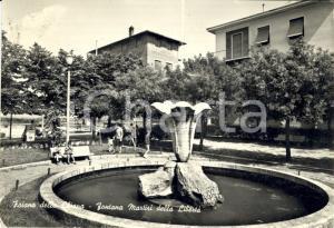 1973 FOIANO DELLA CHIANA (AR) Fontana MARTIRI DELLA LIBERTA' *Animata FG VG
