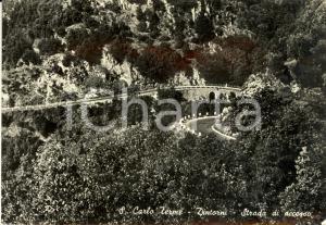 1959 SAN CARLO TERME (MS) Strada di accesso al paese *Cartolina postale FG VG