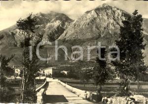 1951 AVEZZANO (AQ) Veduta ingresso paese e Monte VELINO *Cartolina postale FG VG