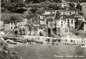 1953 MARATEA (PZ) Scorcio porto e spiaggia con bagnanti *Cartolina ANIMATA FG VG
