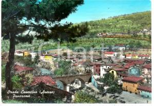 1963 CASTEL SAN NICCOLO' (AR) Panorama frazione STRADA IN CASENTINO *Cartolina