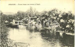 1915 ca SIRACUSA Fiume ANAPO con piante di papiri *Cartolina FP NV ANIMATA