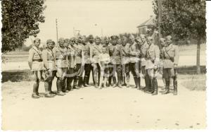 1941 WW2 UROSEVAC (Kosovo) Visita ufficiali bulgari nell'ALBANIA ITALIANA *Foto