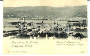 1900 ca TRIESTE Veduta del porto con la Lanterna ANIMATA *Cartolina FP NV