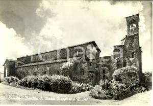 1959 LOMELLO (PV) Basilica di Santa MARIA MAGGIORE e ruderi *Cartolina FG VG