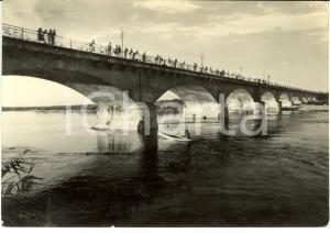 1953 VIGEVANO (PV) Il ponte sul fiume TICINO *Cartolina ANIMATA FG VG