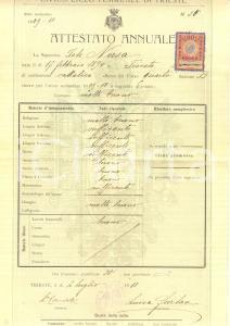 1910 TRIESTE Civico Liceo Femminile Pagella Iole NORSA *Documento