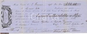 1898 Cambiale Cassa Risparmio Montecarotto, marca