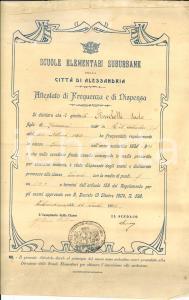 1906 ALESSANDRIA Scuole Elementari - Attestato Paolo ANCELOTTI DANNEGGIATO