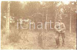 1915 ca WW1 Ufficiale del 3° Reggimento fanteria PIEMONTE posa in un bosco
