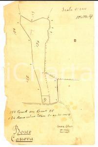 1900 ca BARDOLINO (VR) Planimetria del BOSCO CANOVA 14x21 cm