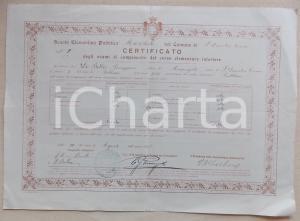 1906 SAN DEMETRIO CORONE (CS) Diploma di licenza elementare Giuseppino DE BELLIS