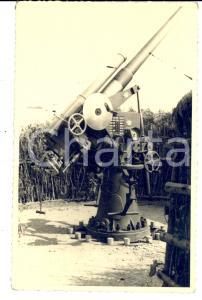 1940 ca WW2 Contraerea mimetizzata in un campo di granoturco *FOTO cartolina