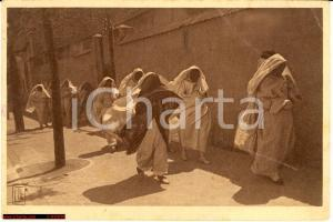 1913 TUNISI Promenade du Harem LT&L FP NV