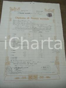 1909 PERUGIA diploma licenza Scuola Normale Femminile