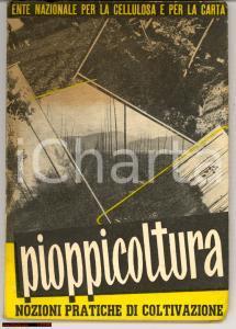 1953 Nozioni pratiche di PIOPPICOLTURA libretto ENCC
