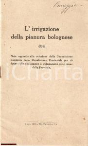 1920 M. PERILLI L'irrigazione della pianura bolognese