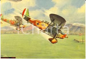 1940 WW2 aerei OFM IMAM Ro 37 in picchiata, aeronautica