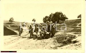 1935 Tripolitania - Pastori sul Garian FP NV