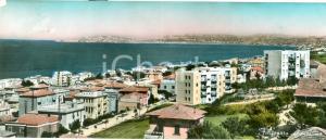 1959 FALCONARA MARITTIMA (AN) Panorama città e golfo FG