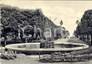 1964 CERIGNOLA (FG) Fontana dei giardini pubblici FG VG