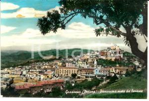 1965 GRASSANO (MT) Panorama visto da levante *Cartolina postale FG VG