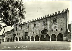 1961 MANTOVA Palazzo Ducale *Cartolina FG VG