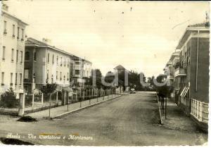 1954 ASOLA (MN) Via Curtatone e Montanara *Cartolina FG VG