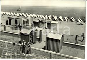 1955 GATTEO (FC) Frazione GATTEO MARE Veduta spiaggia con bagni BERLATI *FG VG