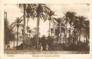 1925 ca TRIPOLI (LIBIA) Guerra ITALO-TURCA Mercato del venerdì nell'oasi ANIMATA