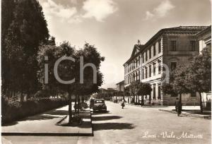 1955 LOCRI (RC) Viale Matteotti Panorama ANIMATA *Cartolina FG NV