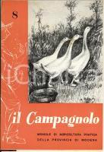 1960 MODENA IL CAMPAGNOLO Rivista agricoltura n°8