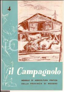 1960 MODENA IL CAMPAGNOLO Rivista agricoltura n° 4