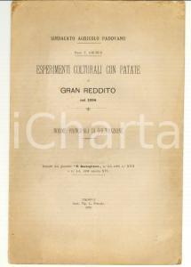 1895 PADOVA Prof. T. GRUBER Esperimenti colturali con patate di gran reddito